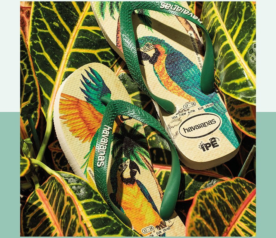 https://www.havaianas-store.com/pt/femininos/chinelos/ipe?options=23929%2C6148